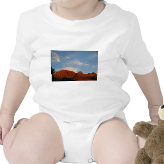 Red Cliffs of Zion Tee Shirts