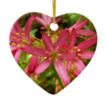 Red Clintonia Flowers Pretty Wildflower Ceramic Ornament