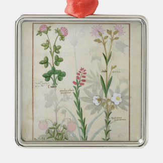 Red clover & Aube Bellidis Onobrychis & Hyssopus Metal Ornament