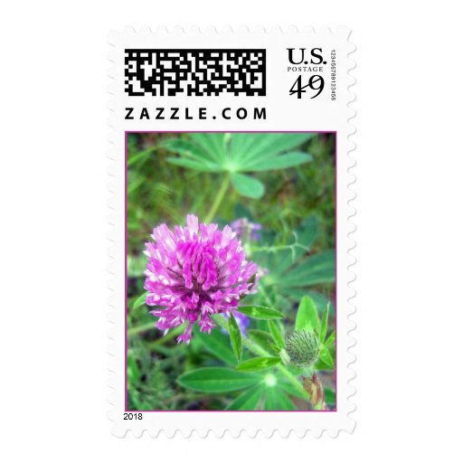 Red Clover Blossom 2 Stamp