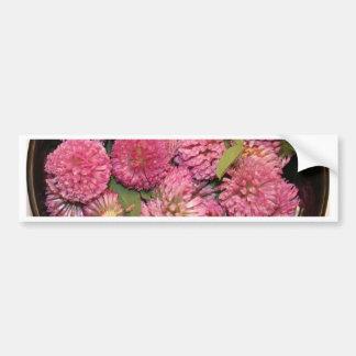 Red Clover Blossoms Car Bumper Sticker