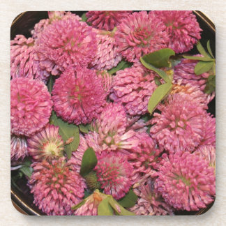 Red Clover Coasters