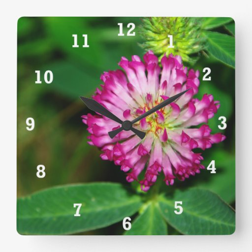 Red Clover Square Wall Clock