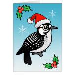 Red-cockaded Woodpecker Santa Card