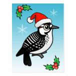 Red-cockaded Woodpecker Santa Post Card