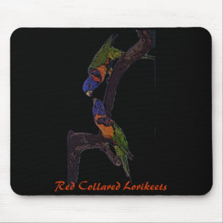 Red Collared Lorikeets mousepad