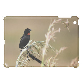 Red Collared Widow South Africa Case For The iPad Mini
