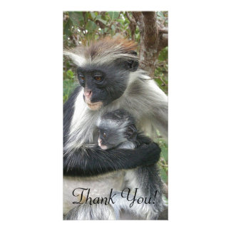 Red Colobus With Wild Hair Clings To Cute Baby Card