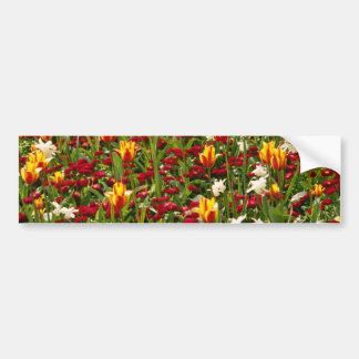 Red Colorful High Park in spring, Toronto, Canada Car Bumper Sticker
