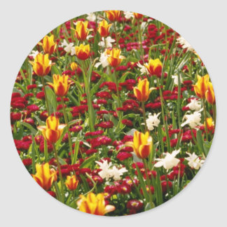 Red Colorful High Park in spring, Toronto, Canada Round Stickers
