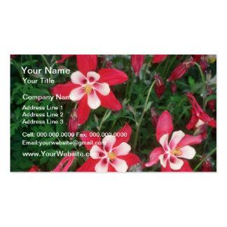 Red Columbine Aquilegia Hybride flowers Business Cards