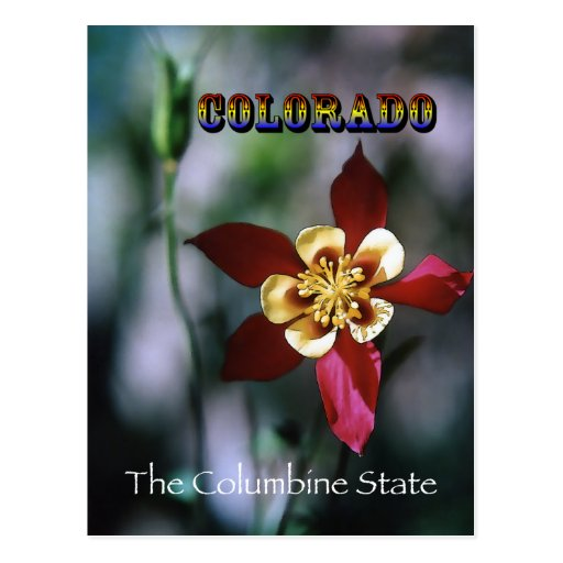 Red Columbine - Vintage Style Postcard