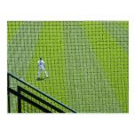Red con el jugador de béisbol en hierba verde postal