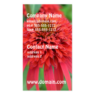 Red Coneflowers Double-Sided Standard Business Cards (Pack Of 100)