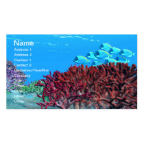 red, blue tango, fish, wild, sea, ocean, saltwater, freshwater, species, underwater, group, together, beautiful, blue, clear, coral, escape, exploration, marine, motion, move, reef, sandy, school, sea life, swim, tropical, water, organism, background, ecosystem, iridescent, reefs, Business Card with custom graphic design