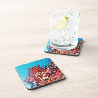 Red Coral Reef Coaster