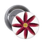 Red Corn Pattern Pins