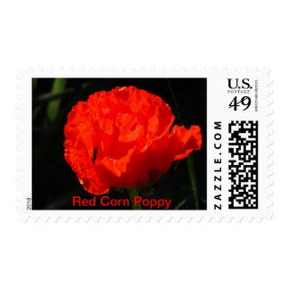 Red Corn Poppy Stamp