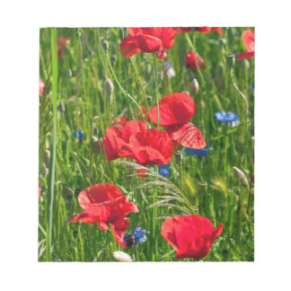 Red corn poppy with blue cornflowers notepad