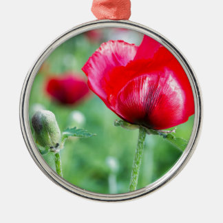 Red corn poppy with flower bud metal ornament