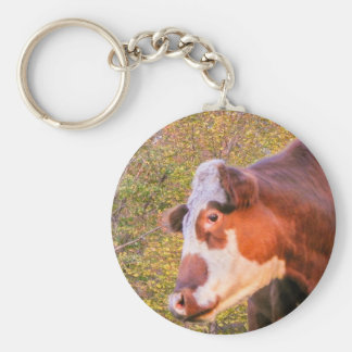 Red Cow in the Autumn Sunlight Basic Round Button Keychain