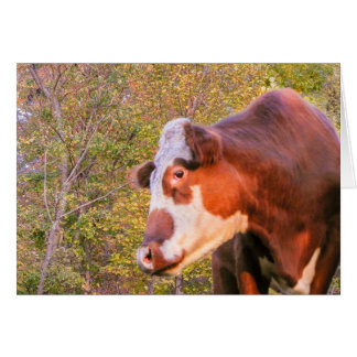 Red Cow in the Autumn Sunlight Card