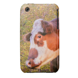 Red Cow in the Autumn Sunlight iPhone 3 Case-Mate Cases