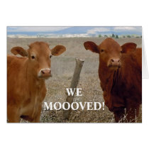 Red Cows - Western Change of Address Card