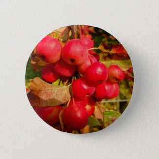 Red Crab Apples Button