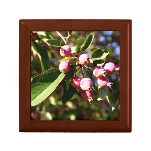 Red Crabapples Gift Box