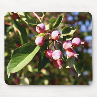 Red Crabapples Mouse Pad