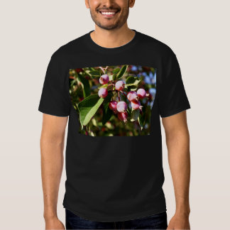 Red Crabapples T-Shirt