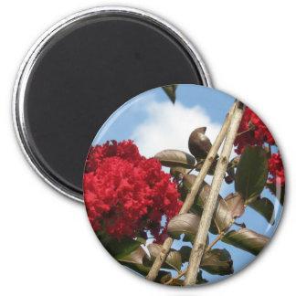 red crepe myrtle magnet