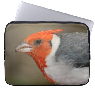 Red Crested Cardinal Laptop Sleeve