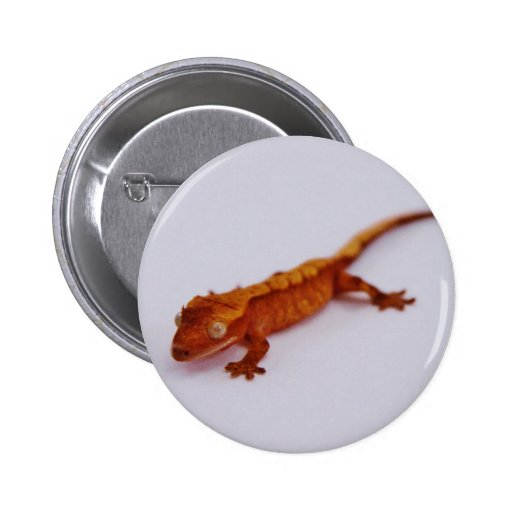 Red Crested Gecko 2 Inch Round Button
