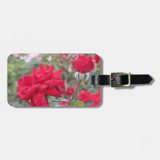 Red Crimson Bouquet Roses Luggage Tag