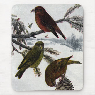 Red Crossbills and Pinecone Mouse Pad