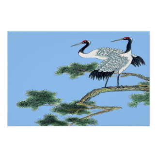 Red Crowned Crane Standing poster Drawing
