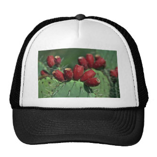 Red Crowns Mesh Hat