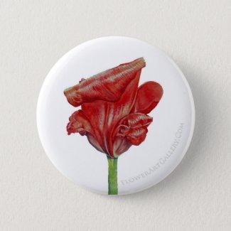 Red Culry Tulip Button