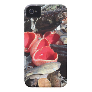Red Cup Fungus iPhone 4 Case-Mate Case