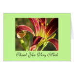 Red Curls Thank You Greeting Cards