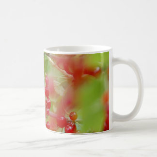 Red Currant Berries Mug