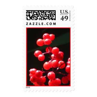 Red Currant Berries Postage Stamps