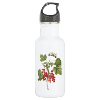 red currant(Ribes rubrum) by Redouté 18oz Water Bottle
