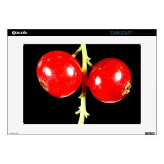 Red Currants Decals For Laptops