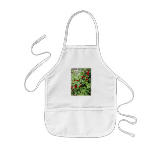 Red Currants on the Plant. Green Leaves. Apron