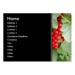 Red Currants on the Plant. Green Leaves. Business Card Templates