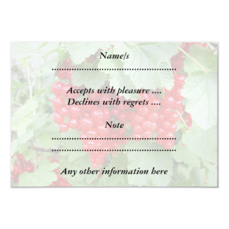 Red Currants on the Plant. Green Leaves. 3.5x5 Paper Invitation Card