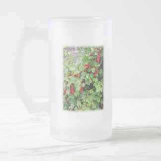Red Currants on the Plant. Green Leaves. 16 Oz Frosted Glass Beer Mug